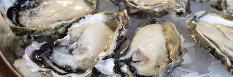Dix mythes et faits sur les huîtres